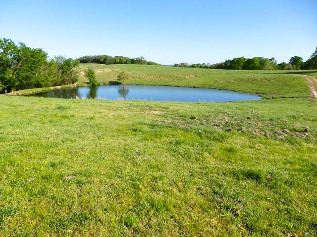 618 County Road, Isabella, MO 65676 (MLS #60163633) :: Team Real Estate - Springfield