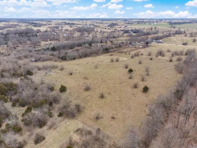 000 W Farm Road 64, Ash Grove, MO 65604 (MLS #60163748) :: Sue Carter Real Estate Group