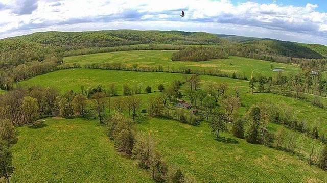 Route 7 Box 371 - Tract A, Doniphan, MO 63935 (MLS #60163841) :: Team Real Estate - Springfield