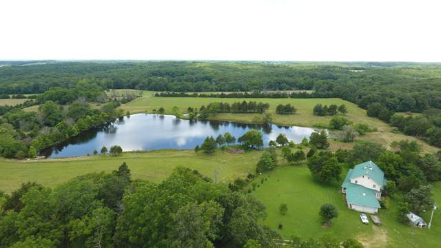 59 Hutton Lake Drive, Windyville, MO 65783 (MLS #60164025) :: Team Real Estate - Springfield