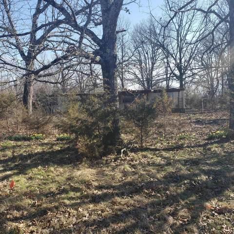 1429 E Farm Road 28, Fair Grove, MO 65648 (MLS #60164171) :: Team Real Estate - Springfield