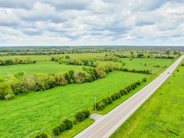 Tbd 50.04a Highway 65, Louisburg, MO 65685 (MLS #60164421) :: Weichert, REALTORS - Good Life
