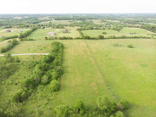 Lot 19b Terrell Creek, Republic, MO 65738 (MLS #60164447) :: Weichert, REALTORS - Good Life