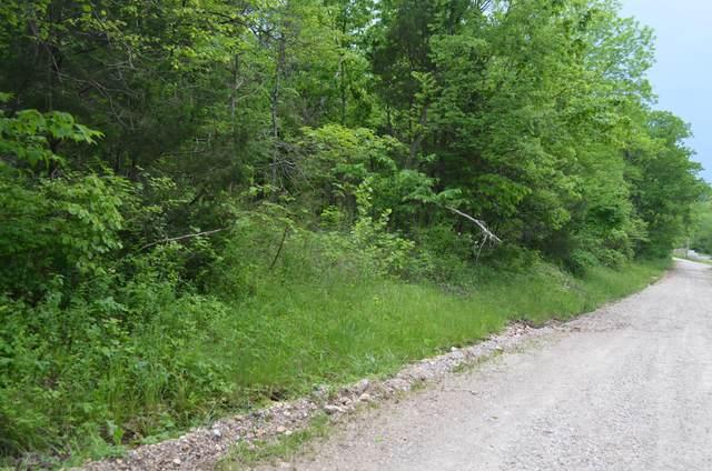 196 Temple Hill Drive, Fordland, MO 65652 (MLS #60164458) :: Weichert, REALTORS - Good Life