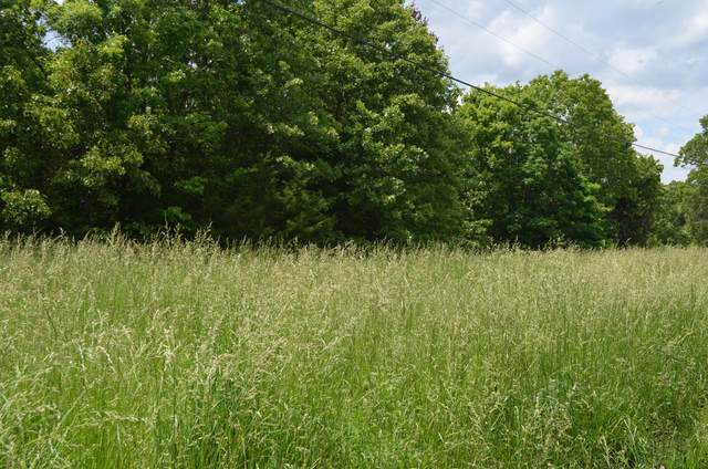 Lot 1-A S Marshfield Road, Bruner, MO 65620 (MLS #60164459) :: The Real Estate Riders