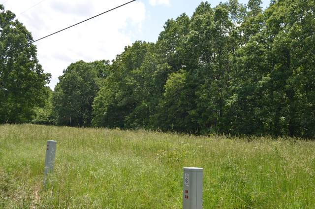 Lot 1-C S Marshfield Road, Bruner, MO 65620 (MLS #60164475) :: The Real Estate Riders