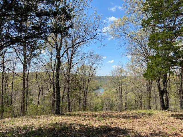 Parcel 8 V Hwy & River Meade Ranch Road, Galena, MO 65656 (MLS #60164542) :: The Real Estate Riders