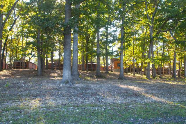 26 Cave Lane Cabin 10, Indian Point, MO 65616 (MLS #60164591) :: Team Real Estate - Springfield
