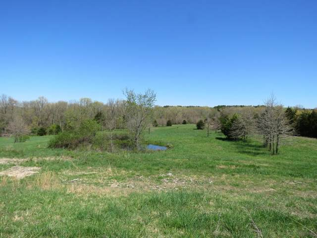 6769 State Highway Jj, Ava, MO 65608 (MLS #60164597) :: Team Real Estate - Springfield