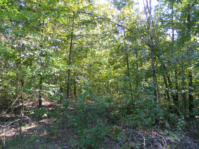 Tbd Private Road 200, Alton, MO 65606 (MLS #60164632) :: Sue Carter Real Estate Group