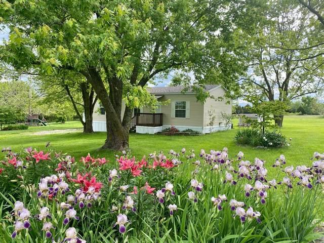 5281 S 250th Road, Buffalo, MO 65622 (MLS #60164701) :: Team Real Estate - Springfield