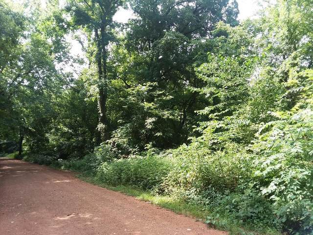 Tract 4 Schlessman Road, Anderson, MO 64831 (MLS #60165069) :: Weichert, REALTORS - Good Life