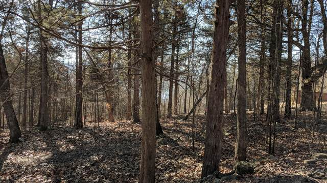 Tbd Peach Tree Lane, Shell Knob, MO 65747 (MLS #60165126) :: Sue Carter Real Estate Group