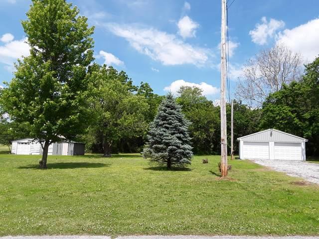 687 S Pennsylvania Street, Granby, MO 64844 (MLS #60165182) :: Weichert, REALTORS - Good Life