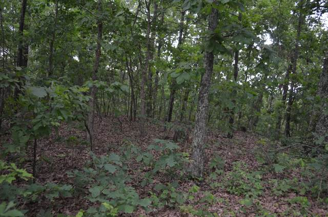 Lot 26-2 High View Circle, Bruner, MO 65620 (MLS #60165336) :: The Real Estate Riders