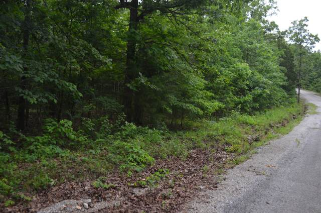 Lot 26-3 High View Circle, Bruner, MO 65620 (MLS #60165338) :: The Real Estate Riders