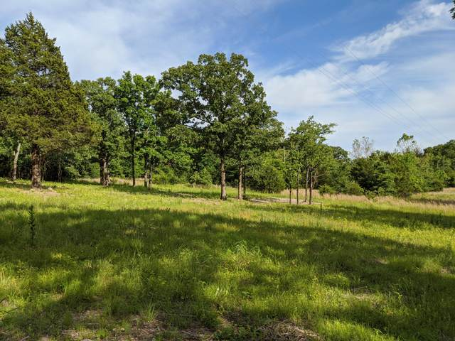 000 Tick Mountain Road, Shell Knob, MO 65747 (MLS #60165356) :: The Real Estate Riders