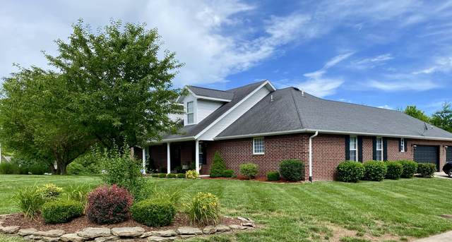 844 Scenic View Court, Nixa, MO 65714 (MLS #60165377) :: The Real Estate Riders