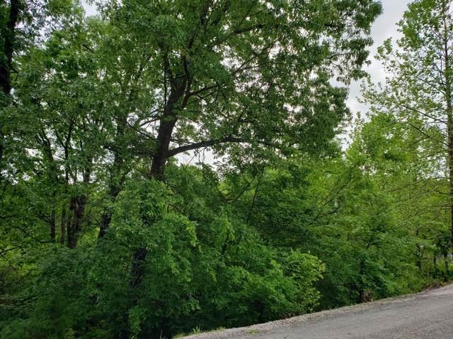 000 Oak Harbor Estates, Joe Bald R, Kimberling City, MO 65686 (MLS #60165949) :: Sue Carter Real Estate Group