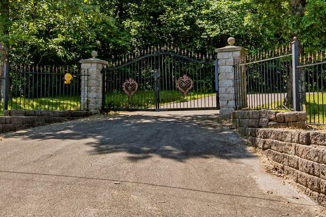 3460 Wilson Road, Republic, MO 65738 (MLS #60166280) :: Clay & Clay Real Estate Team