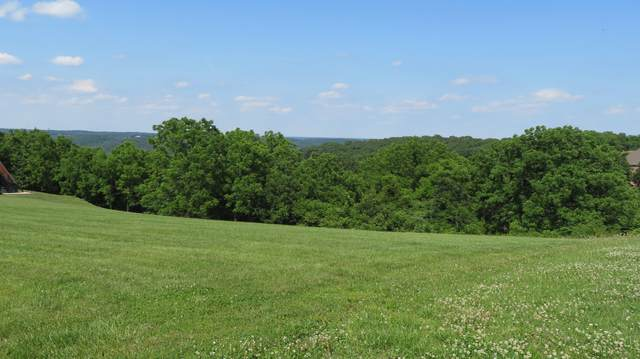 Tbd Whitetail Drive, Walnut Shade, MO 65771 (MLS #60166307) :: Sue Carter Real Estate Group