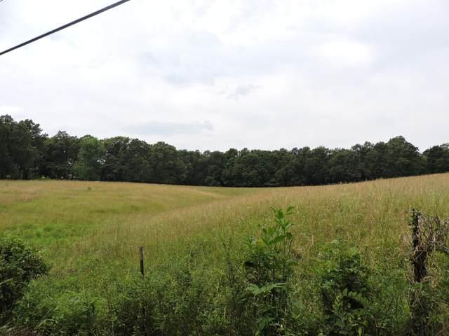 T2 N Farm Road 189, Springfield, MO 65803 (MLS #60166464) :: Sue Carter Real Estate Group