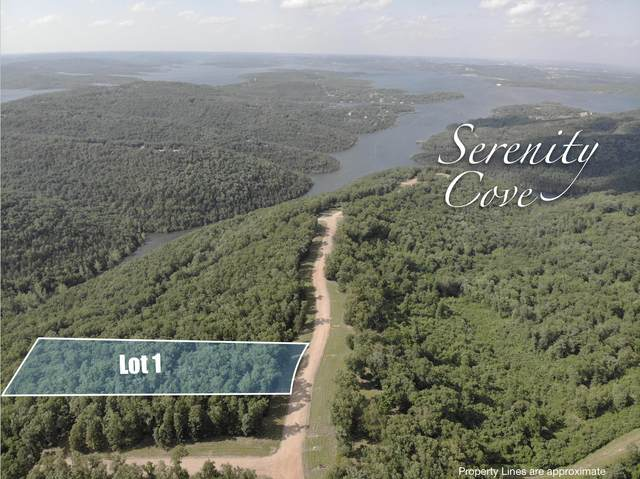 Lot 1 Serenity Cove Drive, Blue Eye, MO 65611 (MLS #60166494) :: Clay & Clay Real Estate Team