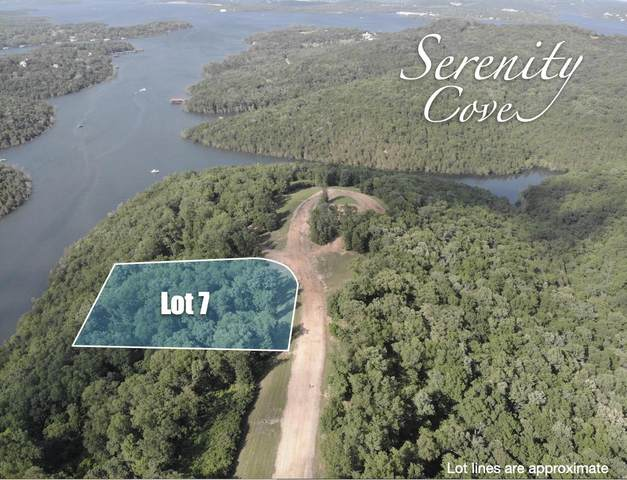 Lot 7 Serenity Cove Drive, Blue Eye, MO 65611 (MLS #60166500) :: Clay & Clay Real Estate Team