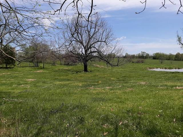 Tract 4 S Farm Rd 119, Battlefield, MO 65619 (MLS #60166943) :: The Real Estate Riders