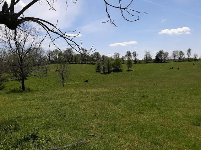 Tract 9 W Farm Rd 190, Battlefield, MO 65619 (MLS #60166966) :: The Real Estate Riders