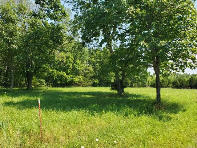 3 Point Eighteen Lane, Lampe, MO 65681 (MLS #60167268) :: Clay & Clay Real Estate Team