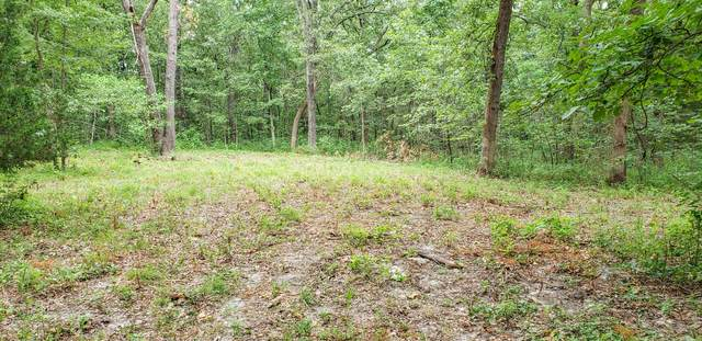 000 Acorn Drive Lot 74, Urbana, MO 65767 (MLS #60167280) :: The Real Estate Riders