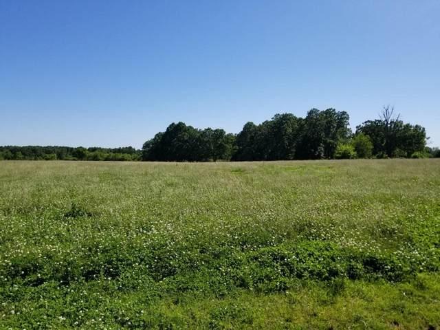 12331 Sorrel Road, Goodman, MO 64843 (MLS #60167385) :: Team Real Estate - Springfield