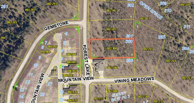 Lot300 Tbd Forest Lake Drive, Branson West, MO 65737 (MLS #60167508) :: Clay & Clay Real Estate Team
