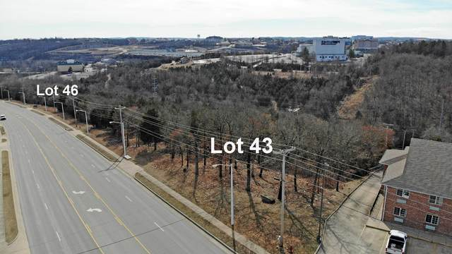 2645 Shepherd Of The Hillls Express, Branson, MO 65616 (MLS #60167789) :: The Real Estate Riders