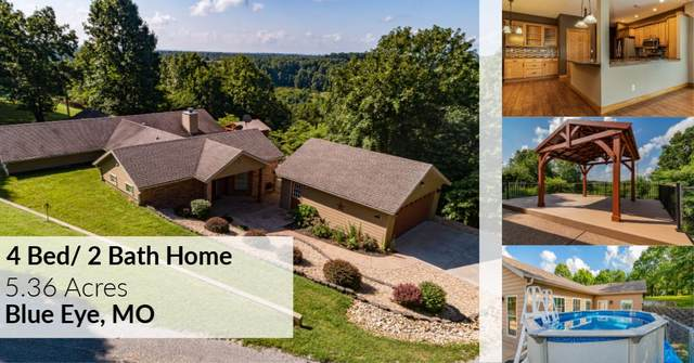 74 Clearview Drive, Blue Eye, MO 65611 (MLS #60168020) :: Sue Carter Real Estate Group