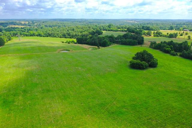 000 County Road 211 And 212, Alton, MO 65606 (MLS #60168150) :: Team Real Estate - Springfield