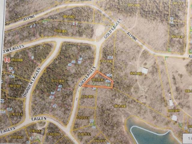 Tbd Lot 35A Gold Eagles Pt+Boatsli, Shell Knob, MO 65747 (MLS #60168233) :: The Real Estate Riders