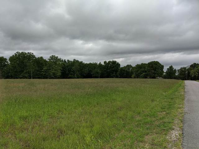 Tbd Long View, Forsyth, MO 65653 (MLS #60168254) :: The Real Estate Riders