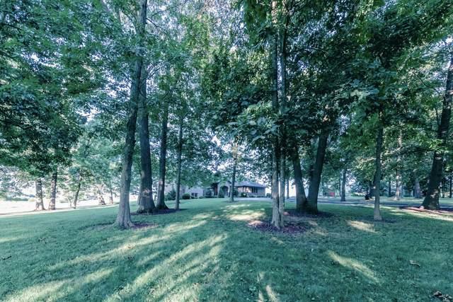 1124 Emerald Hills Drive, Nixa, MO 65714 (MLS #60168567) :: Clay & Clay Real Estate Team
