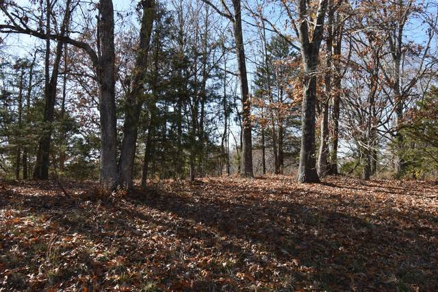 Lot 69 Lost In Woods Lane, Cape Fair, MO 65624 (MLS #60168849) :: Sue Carter Real Estate Group