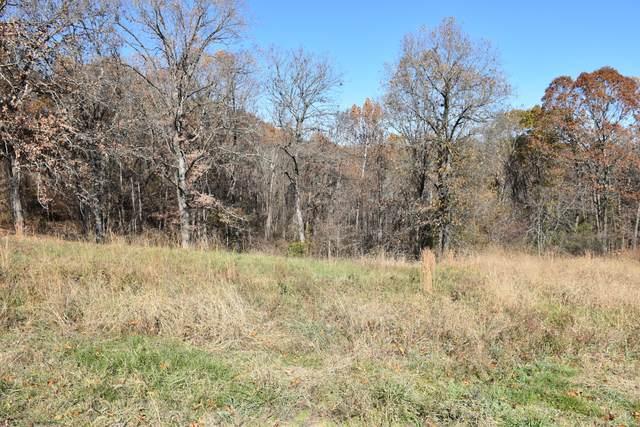 Lot 194 Panorama Drive, Cape Fair, MO 65624 (MLS #60168852) :: Team Real Estate - Springfield