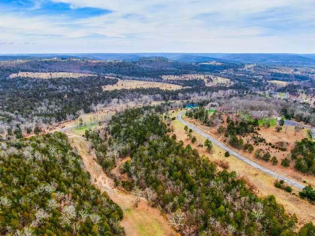 Lot 80a Cedar Bluff, Saddlebrooke, MO 65630 (MLS #60168915) :: The Real Estate Riders