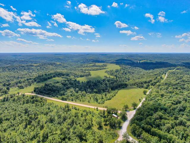 260 State Rd Yy, Tunas, MO 65764 (MLS #60168945) :: Sue Carter Real Estate Group