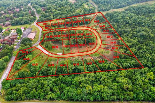 Tbd Echo Hollow Estates, Hollister, MO 65672 (MLS #60169333) :: Team Real Estate - Springfield