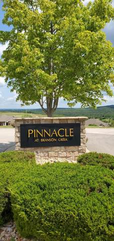 Tbd Lot 31 Pinnacle Circle, Hollister, MO 65672 (MLS #60169356) :: The Real Estate Riders