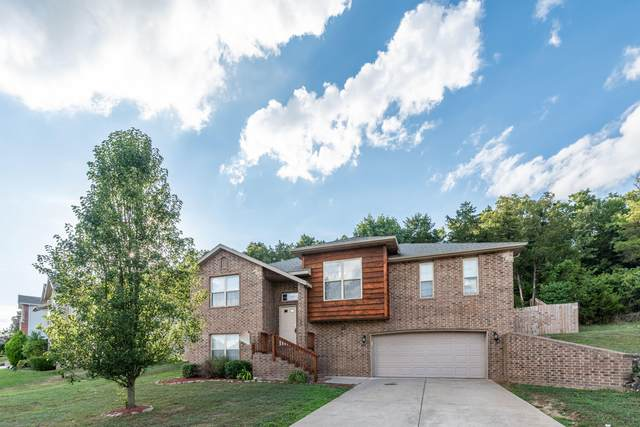 220 Round Hill Road, Branson, MO 65616 (MLS #60169457) :: Sue Carter Real Estate Group