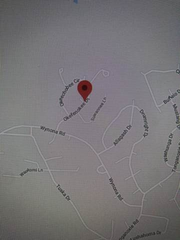 000 Okefenokee Drive, Cherokee Village, AR 72525 (MLS #60169562) :: Team Real Estate - Springfield