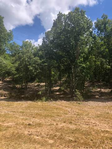 Lot 2 Seveno Ridge, Highlandville, MO 65669 (MLS #60169567) :: Winans - Lee Team | Keller Williams Tri-Lakes