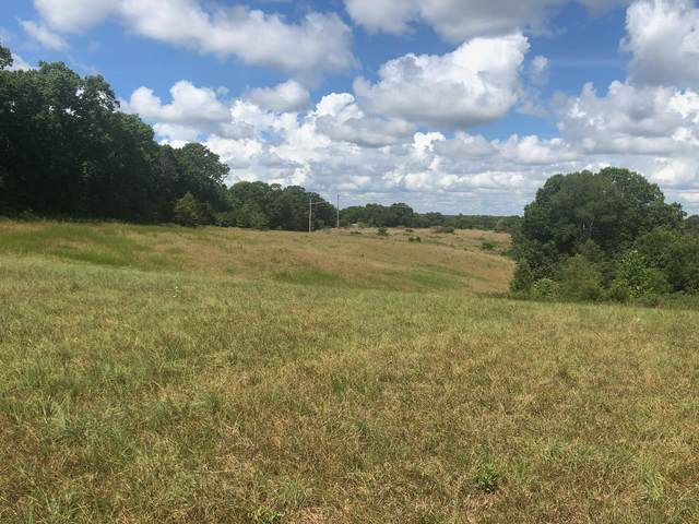 Lot 8 Seveno Ridge, Highlandville, MO 65669 (MLS #60169575) :: Winans - Lee Team | Keller Williams Tri-Lakes